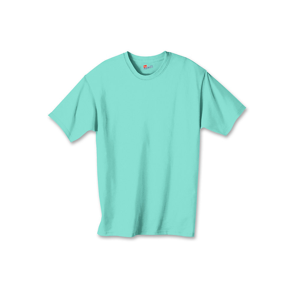 Hanes authentic tagless kids cotton t shirt 5450 for Mint color t shirt