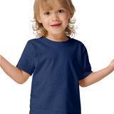 Hanes ComfortSoft Crewneck Toddler T-Shirt T120