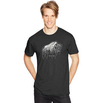 Hanes Men\'s Bison Roam Graphic Tee GT49 Y06367