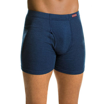 Hanes Men\'s TAGLESS® Boxer Briefs with ComfortSoft® Waistband 4-Pack (2X-3X) 7460P4